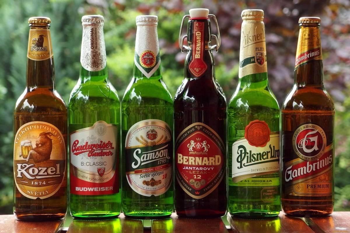 Лучшее пиво в беларуси. пивной рынок беларуси в 2017 году