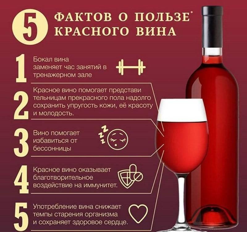 Вино - польза или вред?