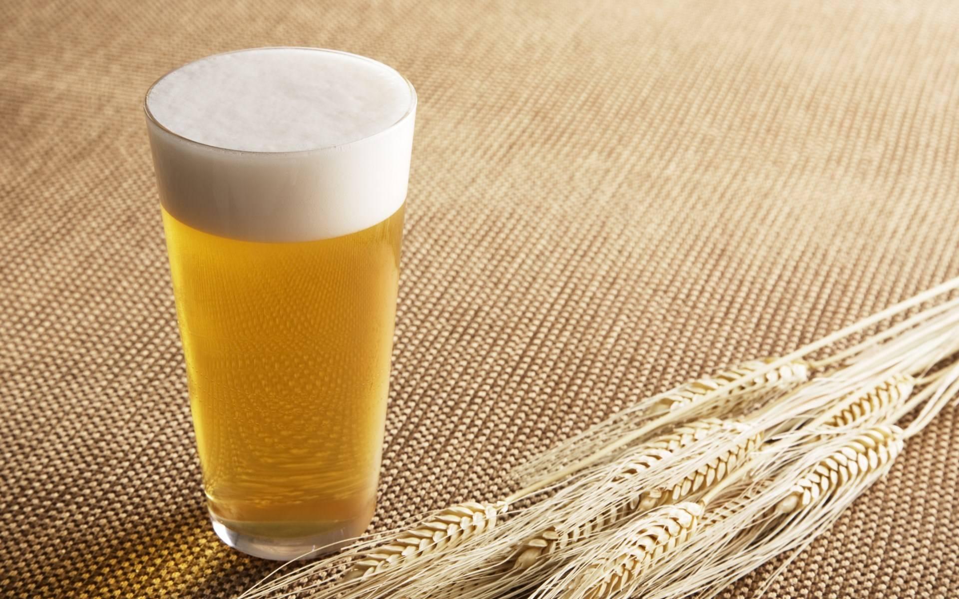 Нефильтрованное пиво польза и вред