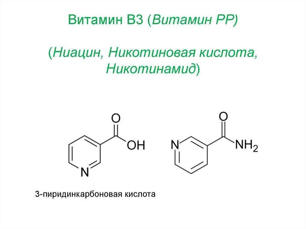 Витамин рр (никотиновая кислота): в каких продуктах содержится, польза и вред, для чего нужен организму и суточная норма