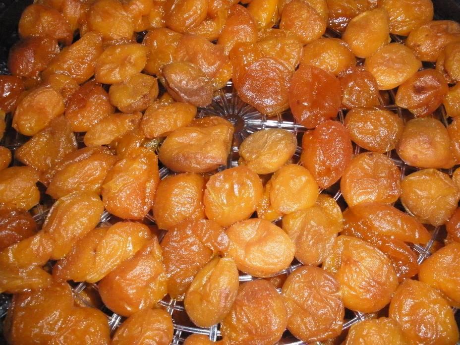 Рецепты абрикосов на зиму: варенье, компот, в сиропе, джем, пюре, сушеные, замороженные
