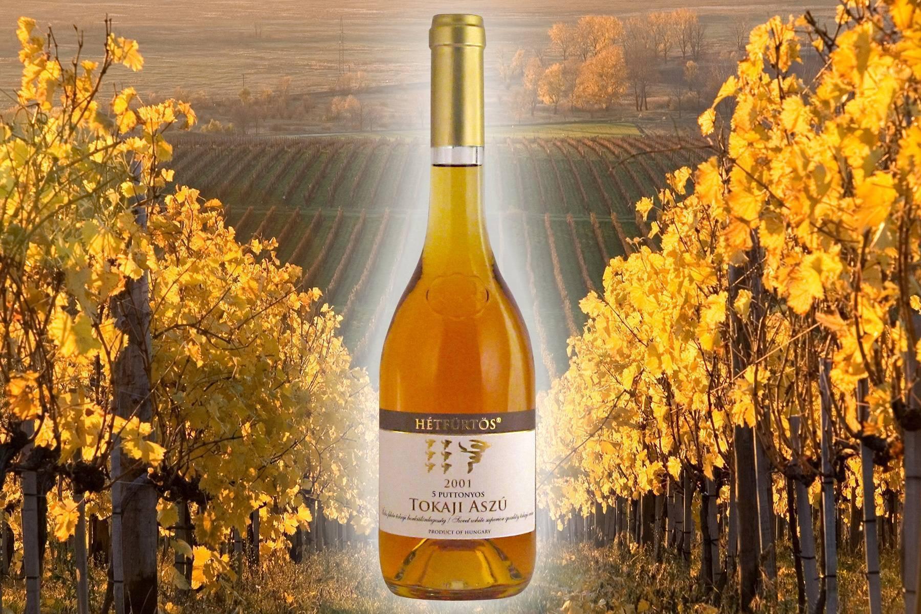 Вина венгрии: марки и бренды венгерских вин