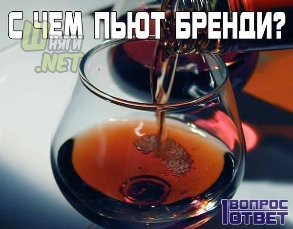 С чем пьют бренди, чем закусывать этот напиток: советы барменов, рекомендации