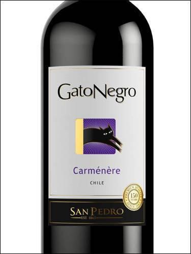 Обзор чилийского вина карменер