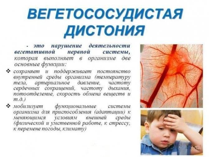 Всд и курение - можно ли курить при вегето сосудистой дистонии