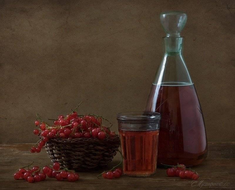 Простой ррецепт: приготовление вина из калины в домашних условиях. | здоровое питание