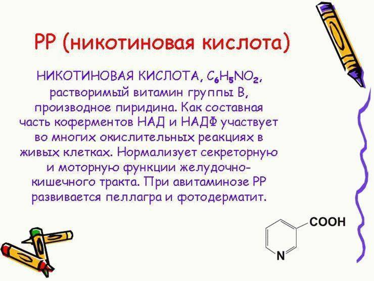 Витамин в3: полезные свойства и особенности применения