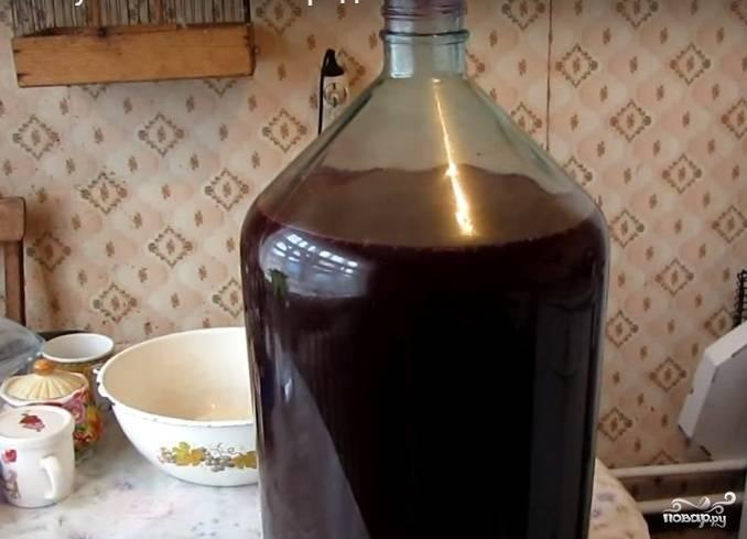 Технология и особенности приготовления самогона из вина