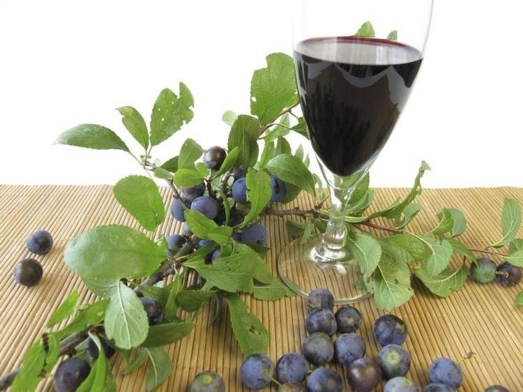 Домашнее вино из терна: три лучших проверенных рецепта