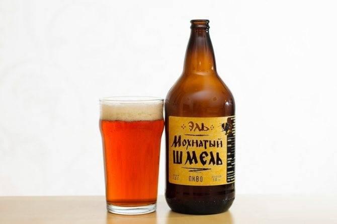 Пиво лагер: особенности производства, сорта, марки. как пить лагер?