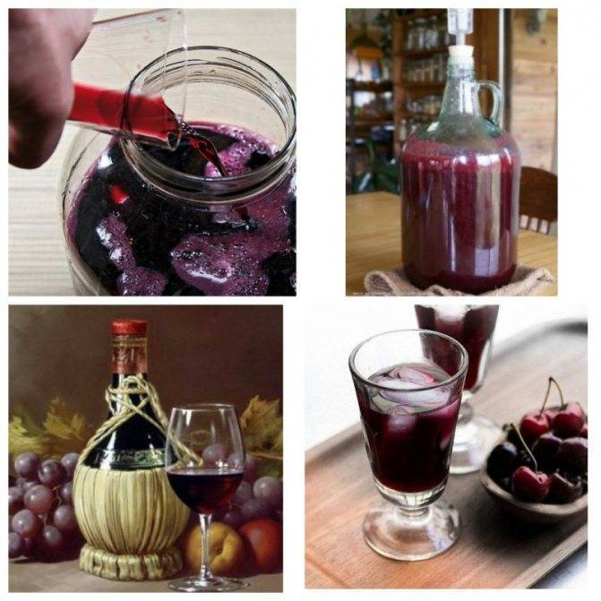 Вино из компота: простой рецепт браги в домашних условиях, как сделать самогон из забродившего, пропавшего, старого компота