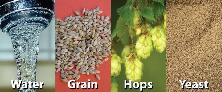 Из чего делают пиво? основные ингредиенты: вода, солод, хмель, дрожжи