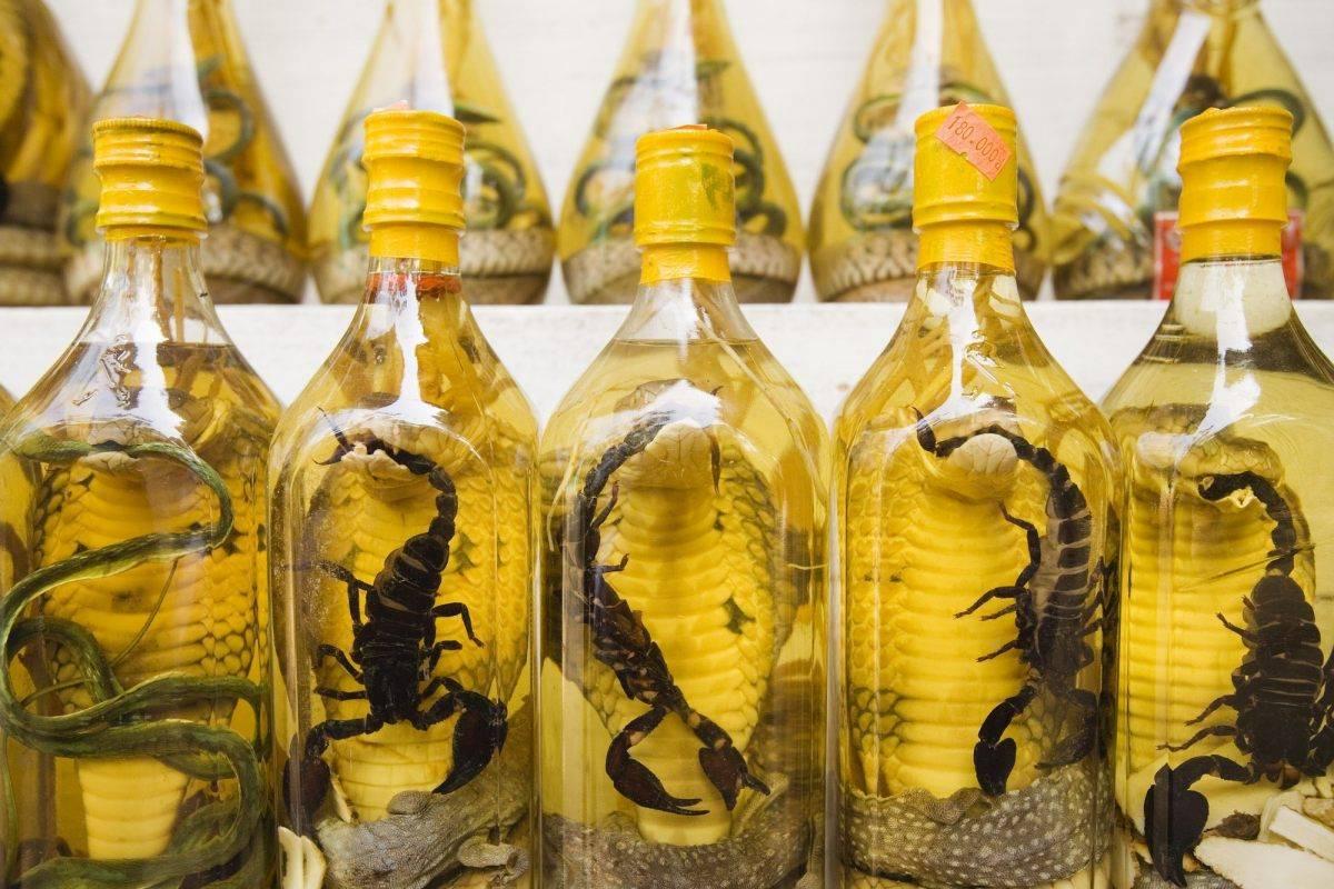 Змеевка (вино или водка со змеей) – экзотическое спиртное востока | алкофан | яндекс дзен
