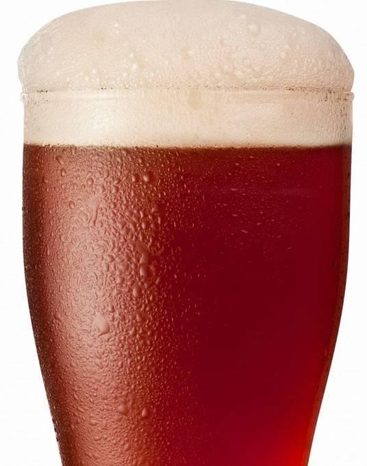 Бельгийское пиво — особенности приготовления, сорта и правила подачи. лучшие марки пива из бельгии (145 фото)
