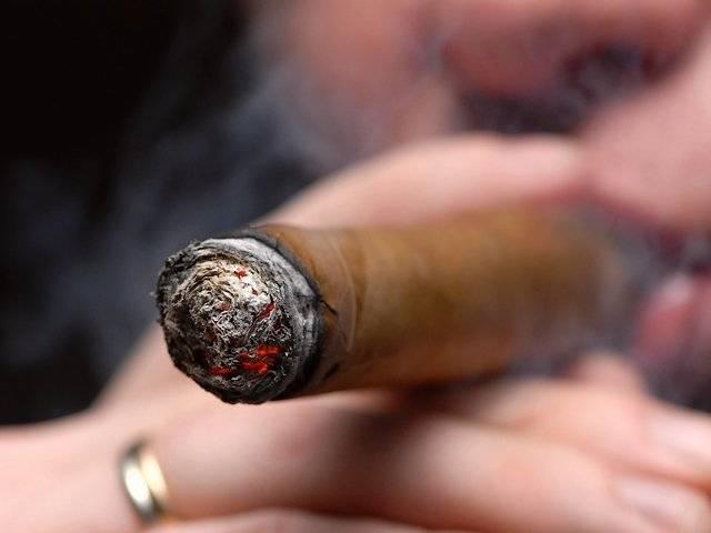 Как правильно курить сигару (обрезать, раскуривать)