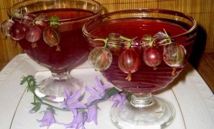 Вино из крыжовника: лучшие простые рецепты с дрожжами и без, с добавлением смородины