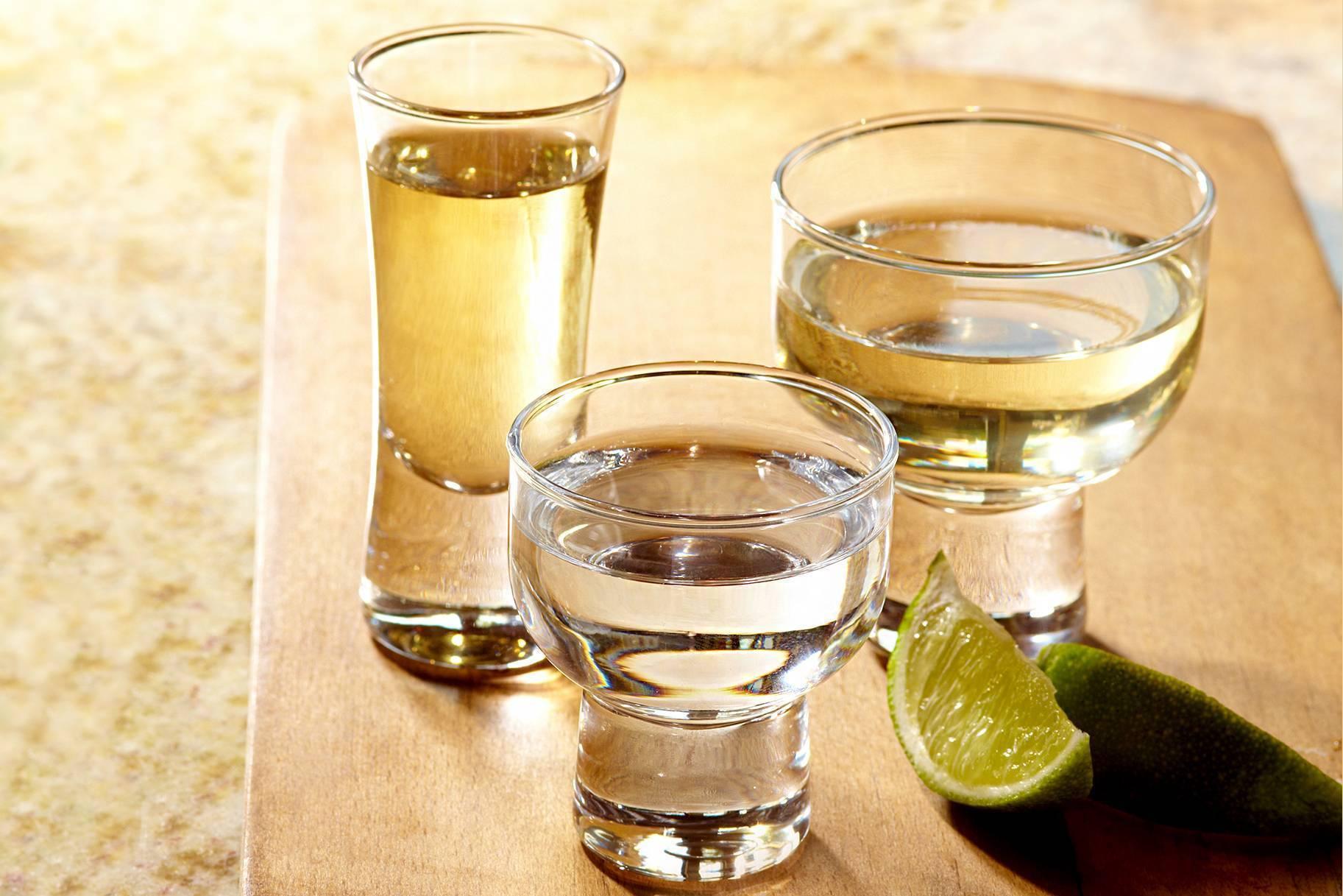 Как пить текилу – обзор шести правильных способов