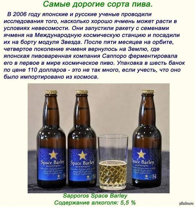 Рейтинг самого крепкого пива