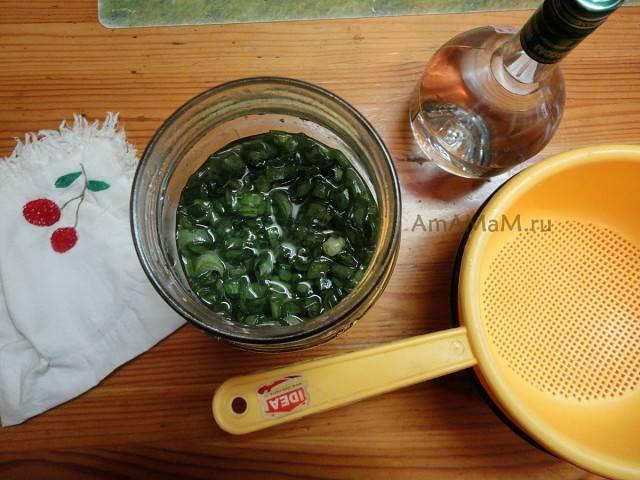 Как применять настойку из водки, меда и алоэ