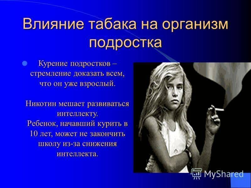 Курение махорки: вред, влияние на организм, способы, закон