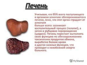 Питание при гепатите с: примерное меню на неделю для восстановления печени, какие продукты включает диетический стол, какую еду нельзя кушать при болезни
