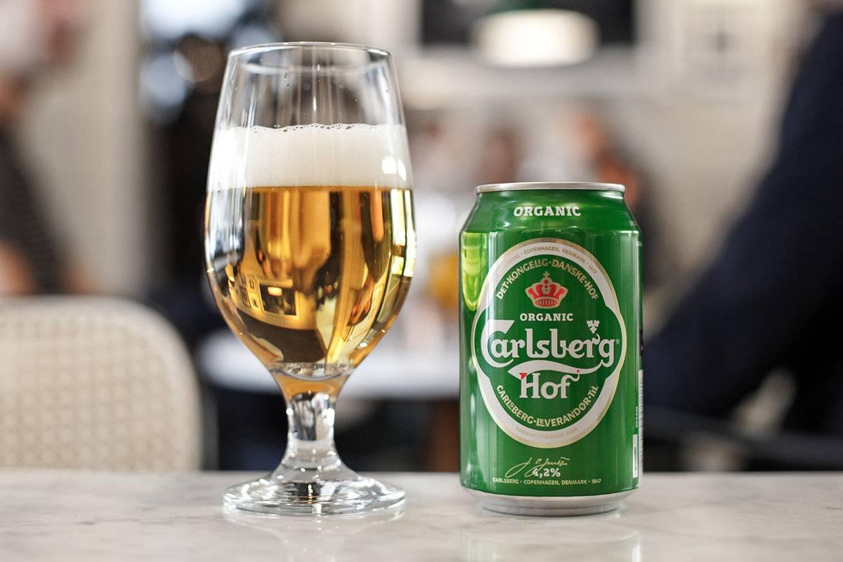 Пиво светлое нефильтрованное карлсберг вайлд нефильтрованное