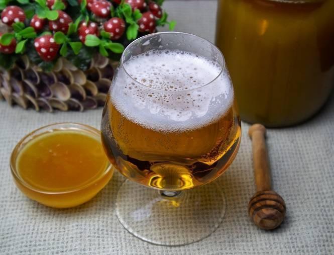 Медовое пиво — 5 рецептов в домашних условиях + советы