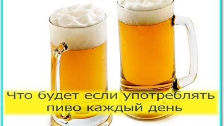 Как правильно пить пиво: чем запивать и закусывать