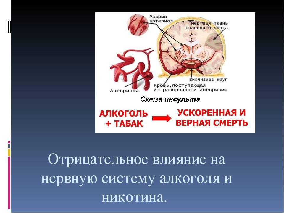 Курение и мозг как влияет курение на мозг, влияние курения на сосуды головного мозга