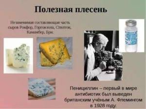 Ампицилиновый ряд антибиотиков названия и его аналоги - neuro-service.ru