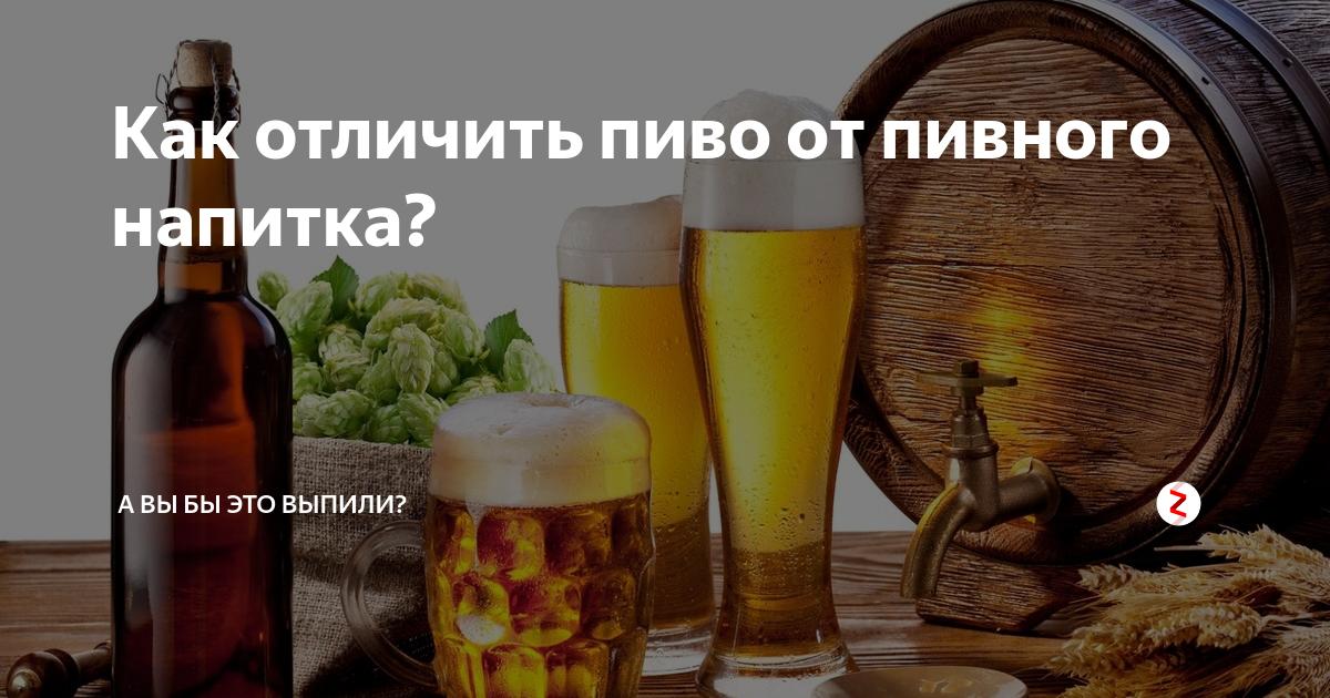 Пивные напитки: марки, отличие от пива :: businessman.ru