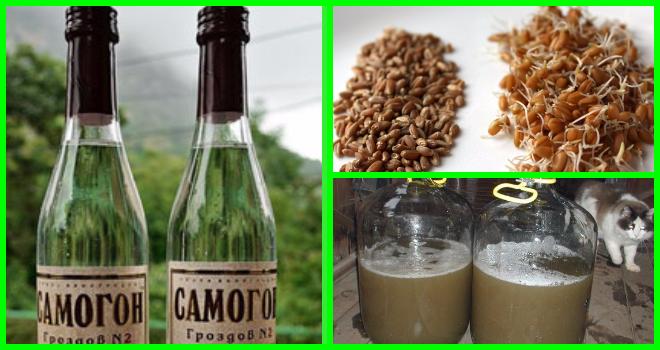 Как сделать самогон: рецепты изготовления пшеничного самогона в домашних условиях, брага из пшеницы с дрожжами