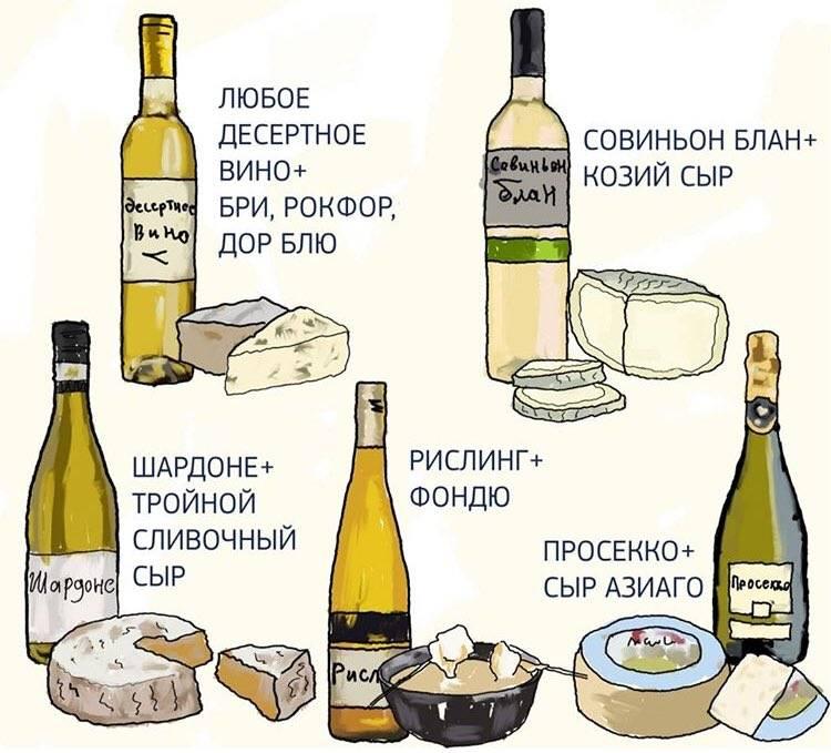 Почему нельзя закусывать вино сыром