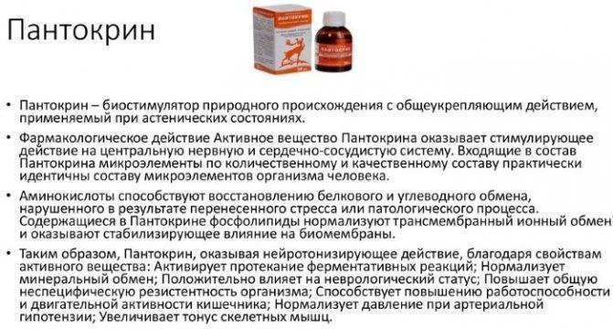 Виасил время действия одной таблетки — kurenie