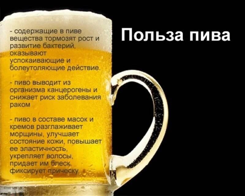 Исследования врачей: как влияет употребления пива на здоровье человека