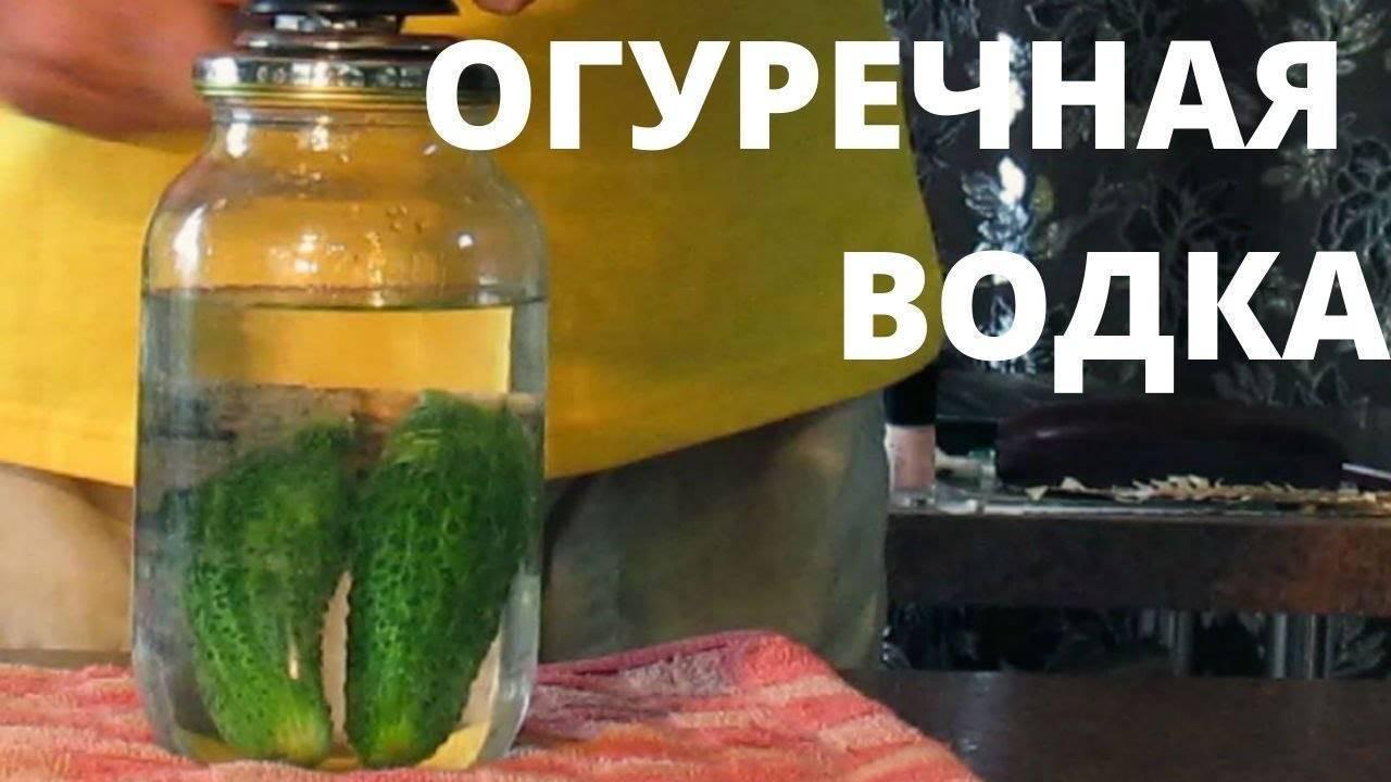 Настойка из огурцов на водке