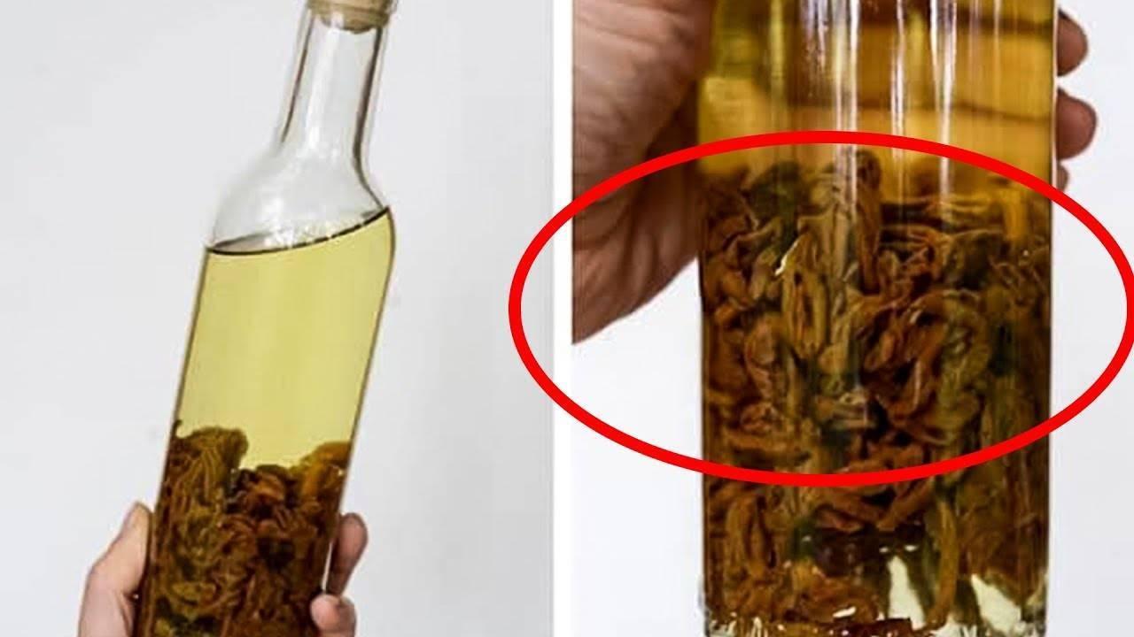 Настойка чаги: применение на водке и спирту