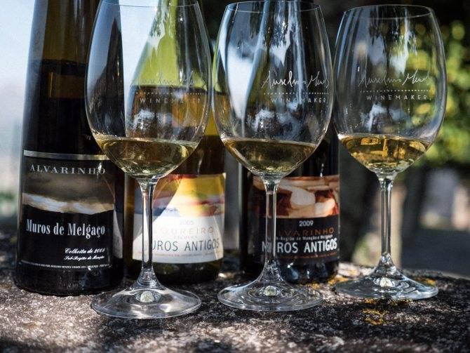 Зеленое вино (верде): что это, особенности, специфика, известные марки + с чем и как пить