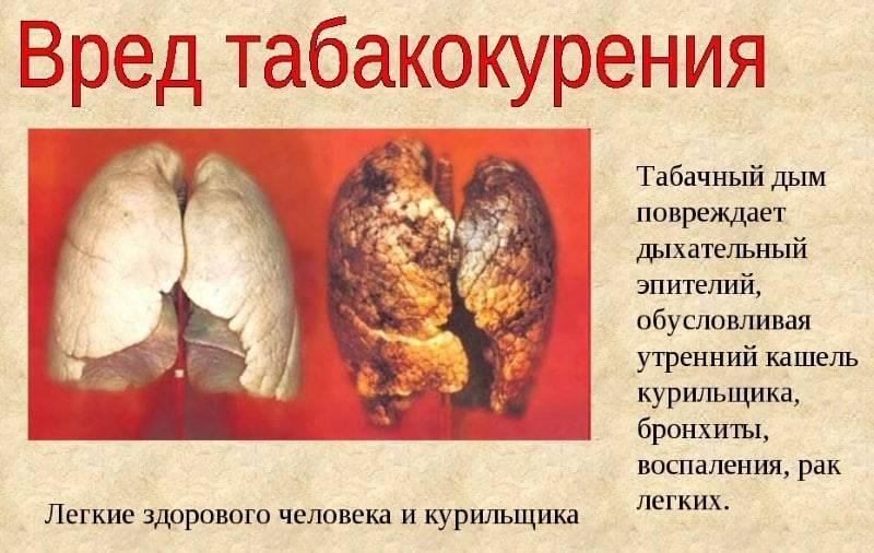 Курение трубки влияние на организм оказывает какое?
