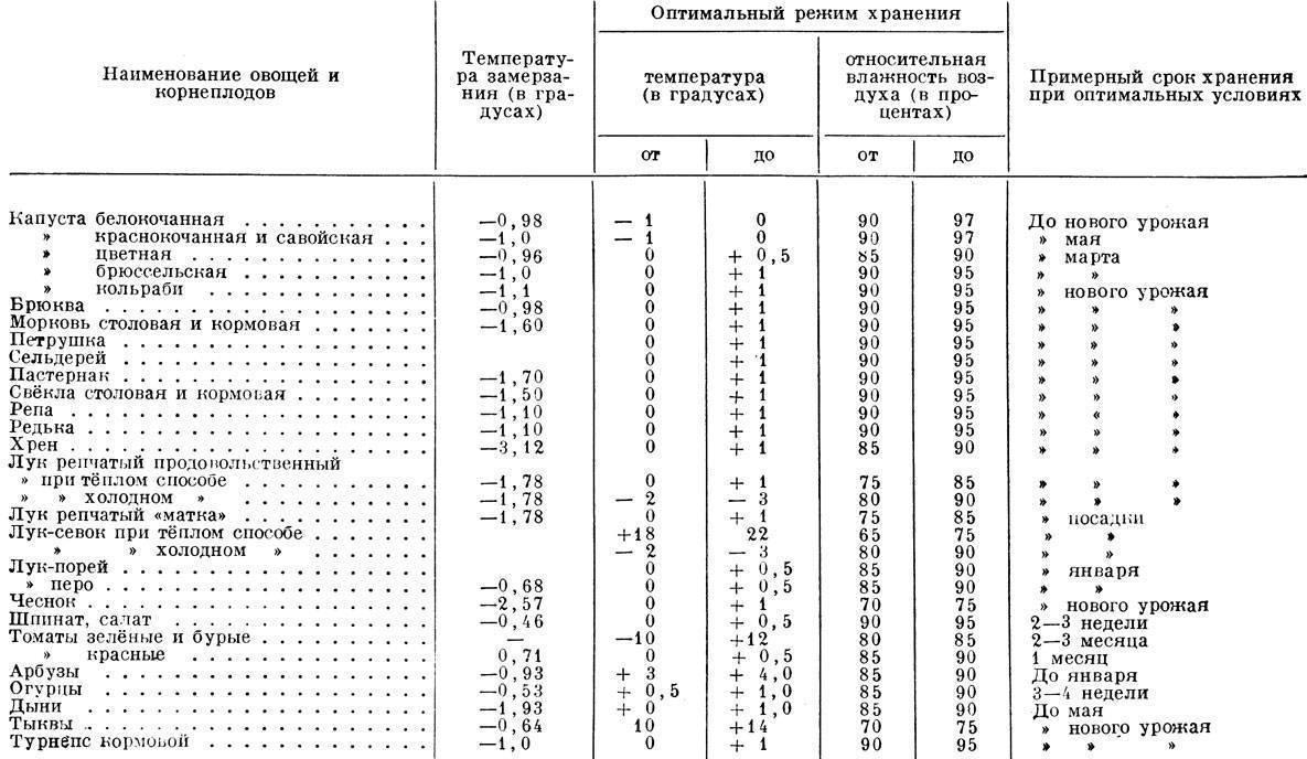 Каков срок годности у коньяка и как его правильно хранить, чтобы он не потерял свои свойства?