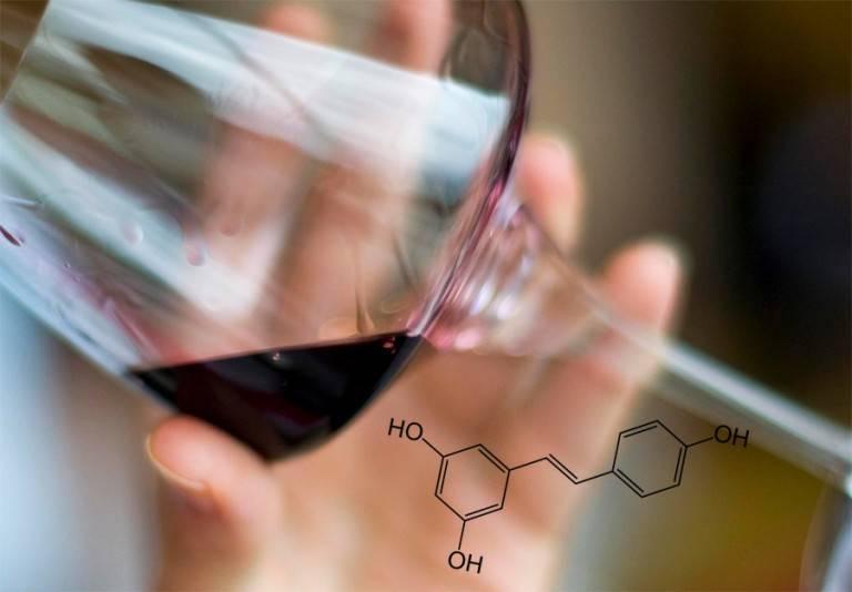 Диоксид серы в вине: влияние на организм человека, что это такое, зачем его добавлять в алкоголь, марки и списки вин без консерванта