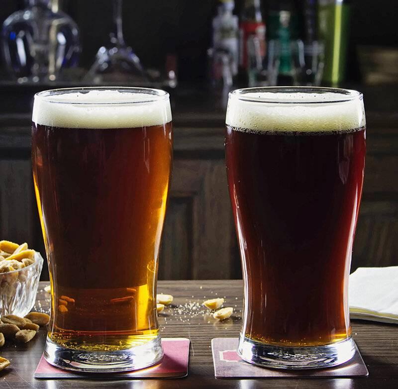 Чем эль отличается от пива + описание 11 сортов эля