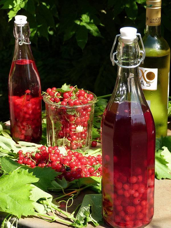 Самогон на черемухе: перкрасные настойки из свежих и сухих ягод