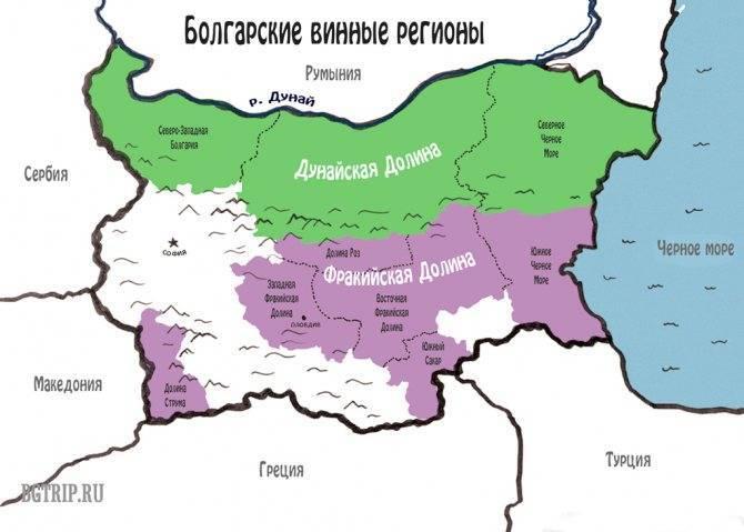 Вина болгарии- названия, виды, описание, производители