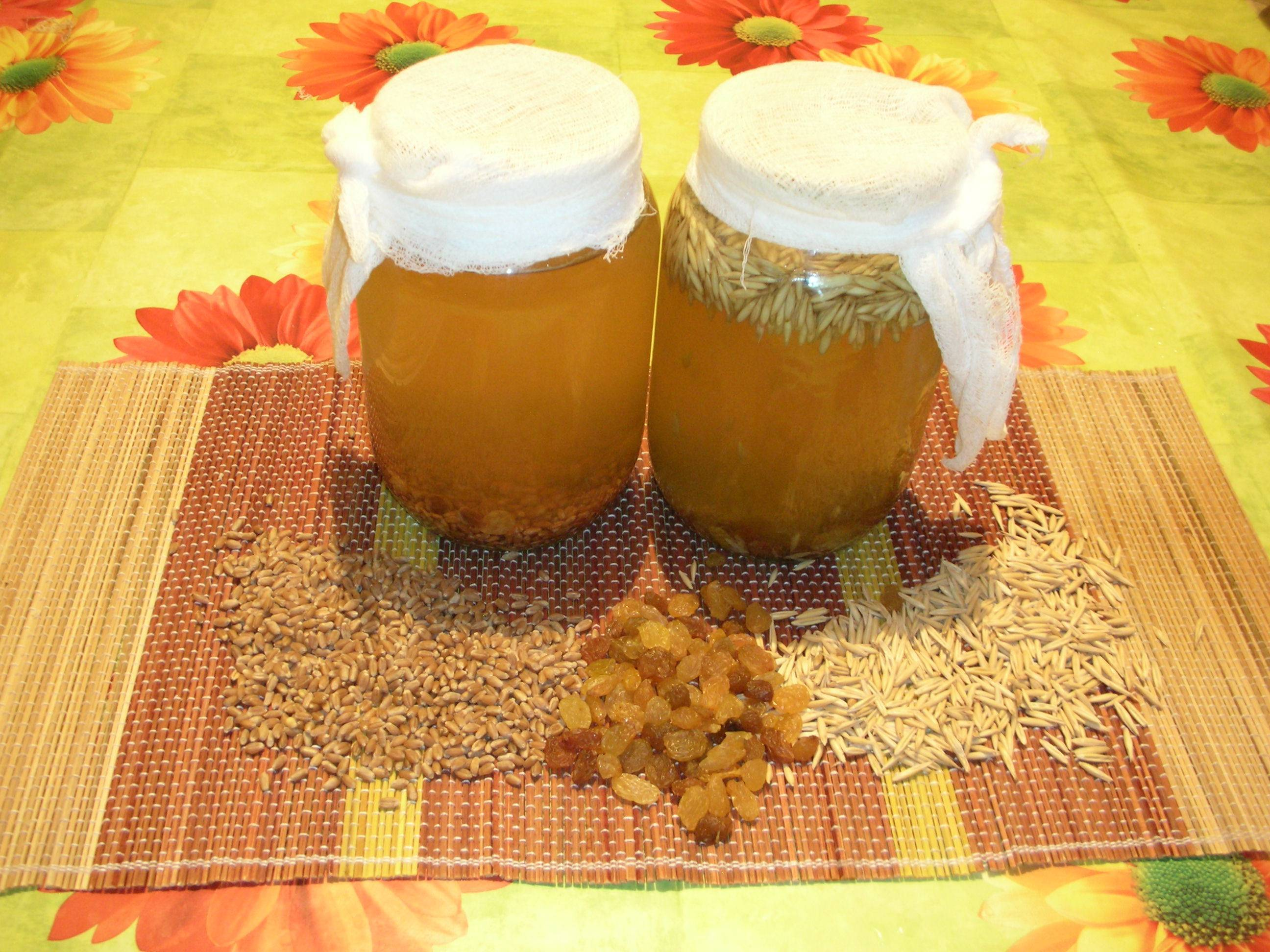 Это правильные пчелы – они варят правильный мёд! рецепт медовухи.