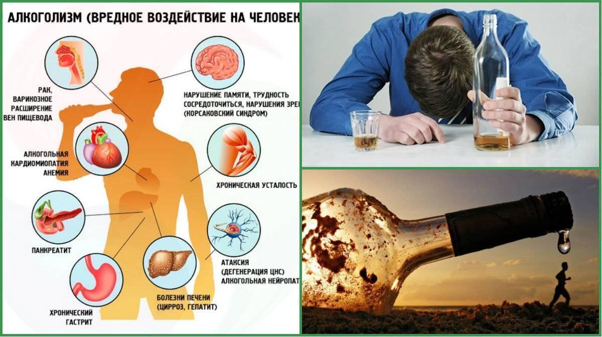 Влияние алкоголя на организм человека. польза и вред алкоголя