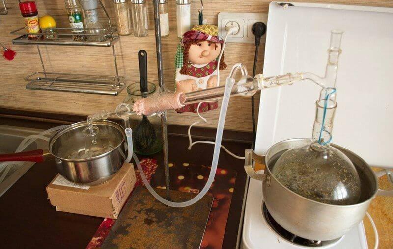 Абсент из самогона: рецепт приготовления в домашних условиях