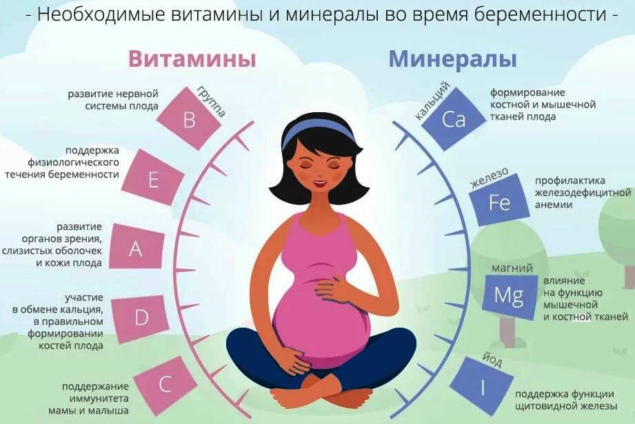 Сколько нужно не пить перед зачатием мужчине или женщине