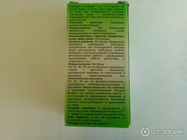 Польза и вред эвкалипта, лечебные свойства, применение, фото, отзывы