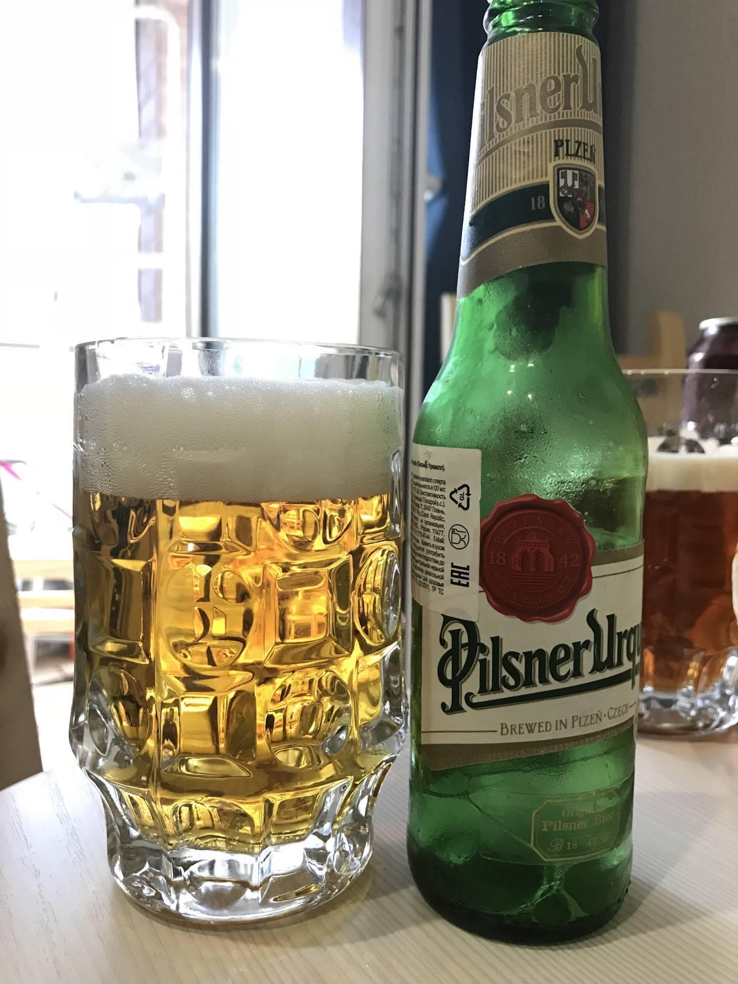 В чём секрет хорошего пилснера? — pivo.by